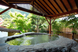 thehotsprings03.JPG